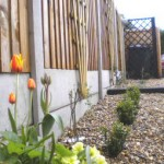 Rear garden - side
